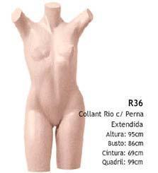 Manequim busto feminino  R36